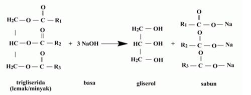 Lipid 53