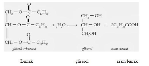 lipid 38