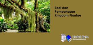 Soal dan Pembahasan Kingdom Plantae