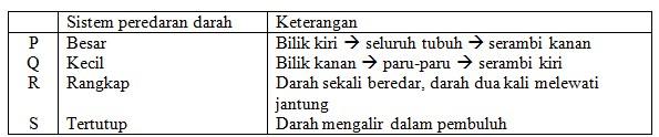 peredaran darah 59-1