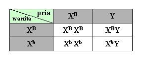 soal materi genetik no 17-1