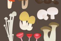 Soal jamur
