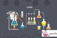 Soal lipid