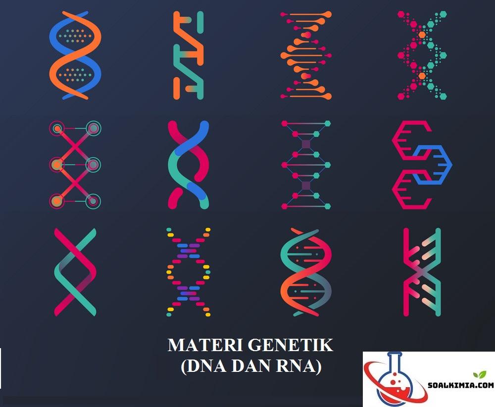 soal materi genetik