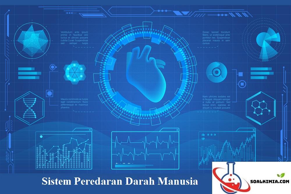 Soal sistem peredaran darah manusia