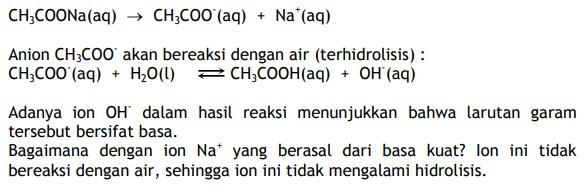 Hidrolisis asam lemah dan basa kuat