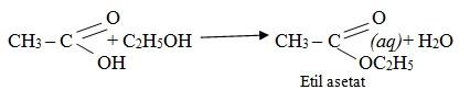 asam karboksilat 1