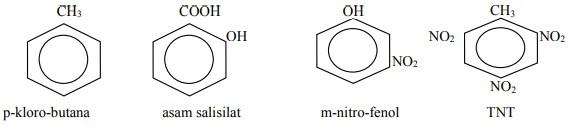 cincin benzena 5