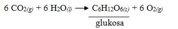 Reaksi Kesetimbangan Kimia