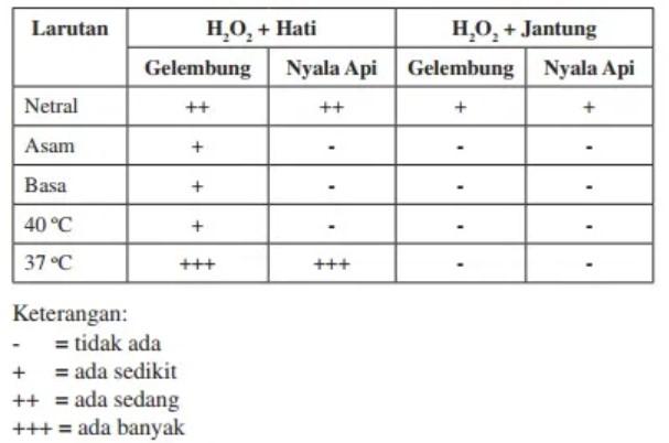 soal metabolisme no-1