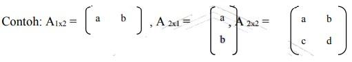 contoh soal matriks no 16
