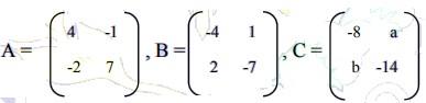 contoh soal matriks no 19