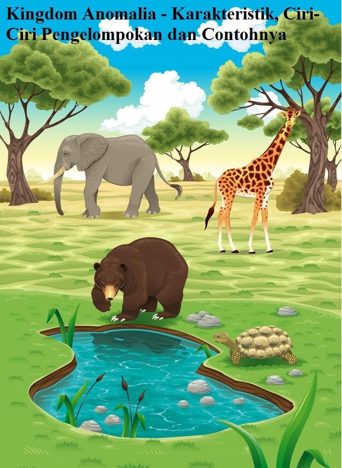 Kingdom Animalia - Karakteristik, Ciri-Ciri Pengelompokan dan Contohnya