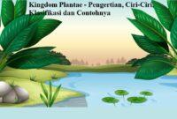 Kingdom Plantae - Pengertian, Ciri-Ciri, Klasifikasi dan Contohnya
