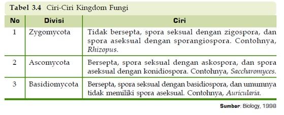 ciri ciri kingdom fungi