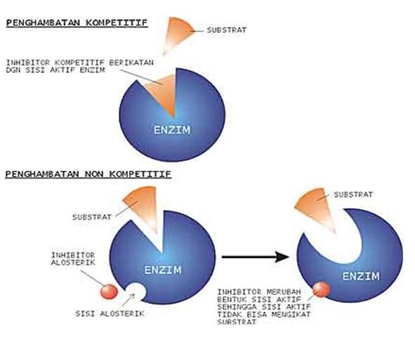 proses reaksi enzimatis
