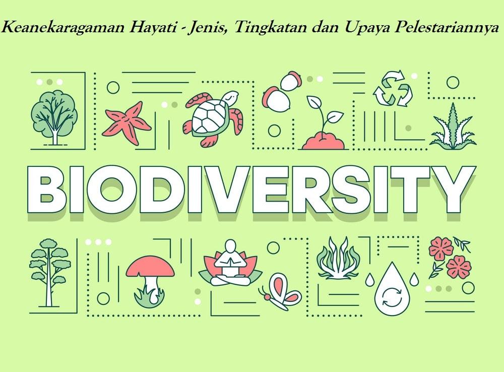 Keanekaragaman Hayati - Jenis, Tingkatan dan Upaya Pelestariannya