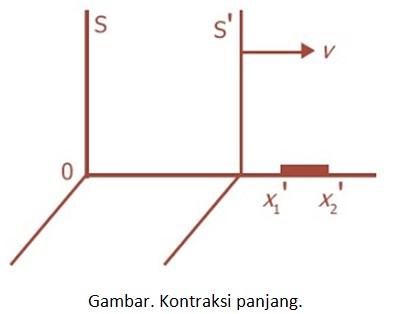 kontraksi panjang-1