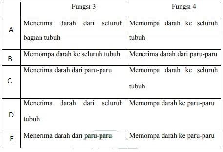 soal-uas-biologi-kelas-11-dan-jawaban-no-6